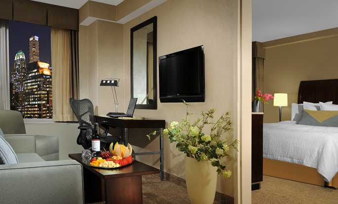 Hotel Hilton Garden Inn New York/West 35th Street, Stati Uniti - Suite
