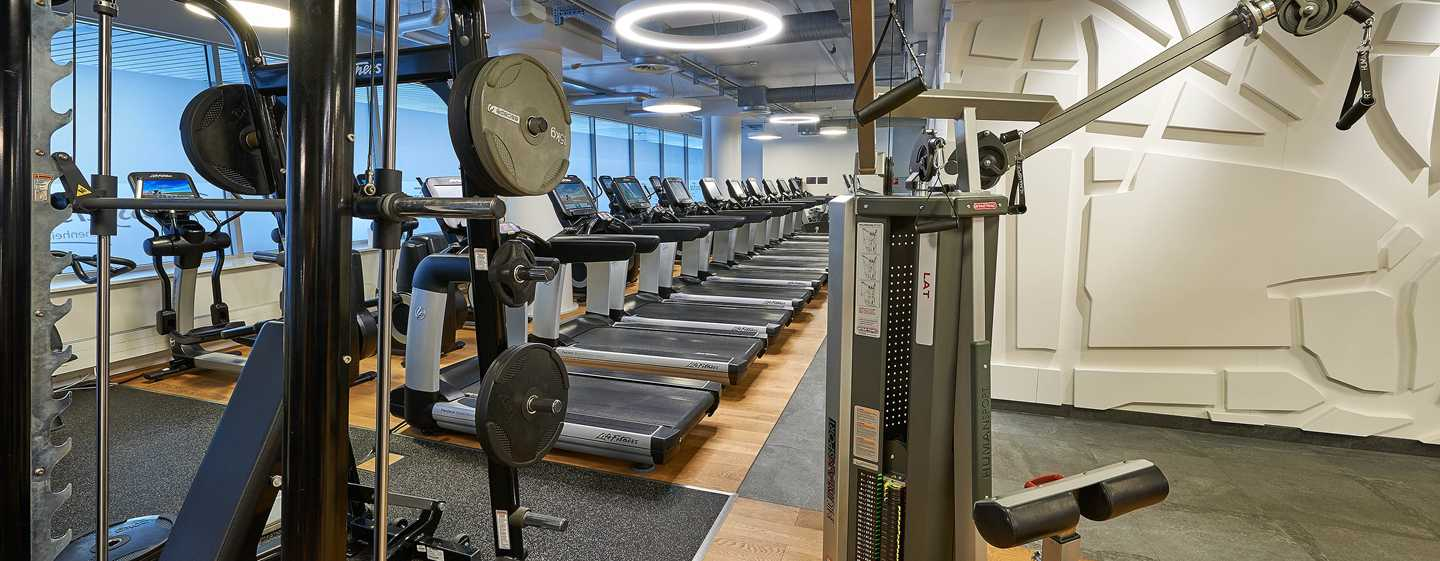 Hotel Hilton Frankfurt City Centre, Germania - Fitness center
