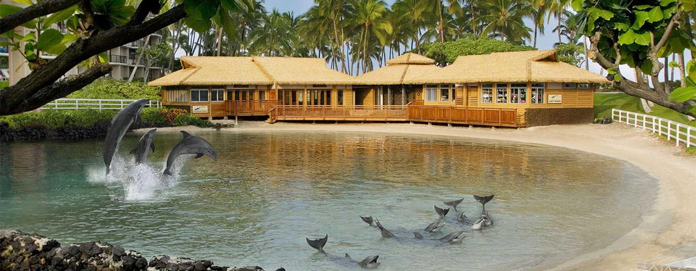 Hotel Hilton Waikoloa Village, Hawaii - Esperienza con i delfini